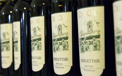 Degustazione vini Ciù Ciù